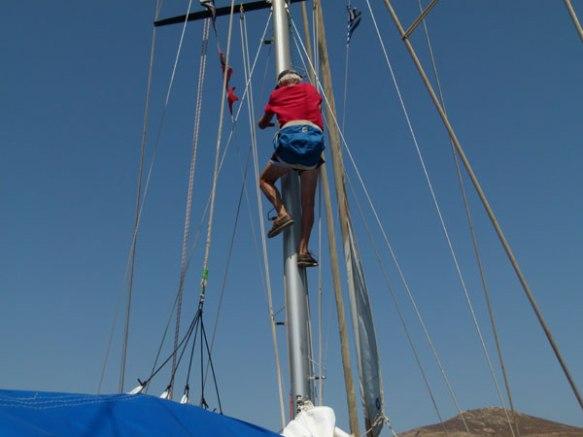 Wolli-klettert-in-den-Mast